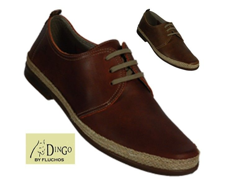 DINGO DERBY - 7868