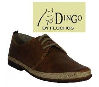 DINGO DERBY - 7868 - 7868 -